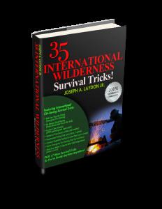 35 International Wilderness 3d small